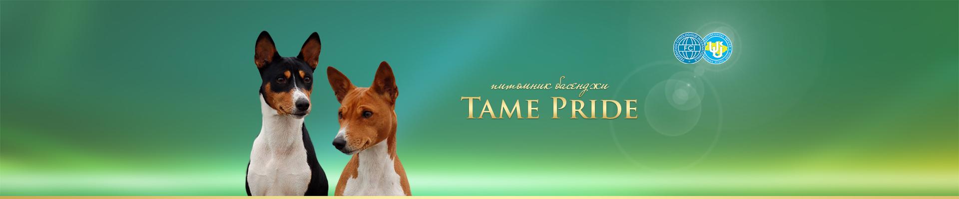 Tame Pride